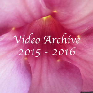 video-archive-2015-16